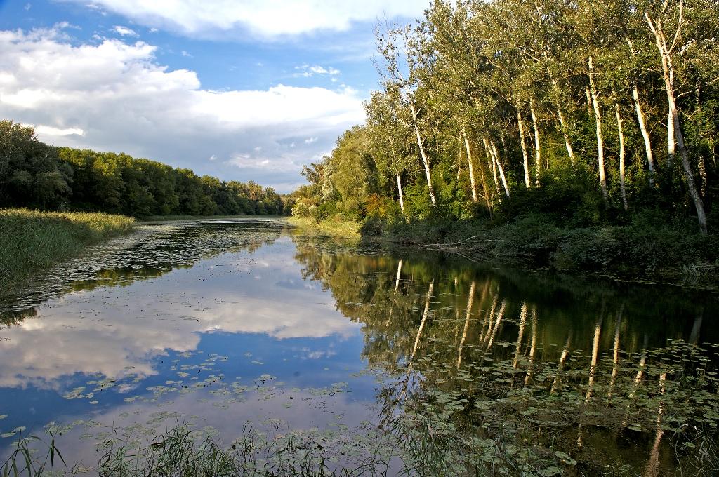 Nationalpark Donau-Auen   Mamilade Ausflugsziele