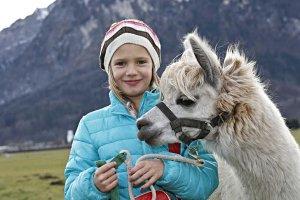 Erlebnisbauernhof Grödig: Alpakawanderungen(c) Markus Tschepp