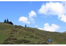 Flachau Wanderung Marbachalmen