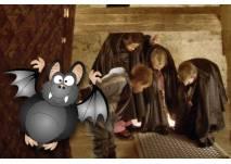 Draculade - Mondscheinführung auf Burg Forchtenstein