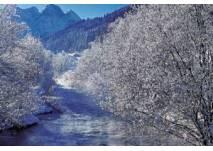 Gosaubachweg Winterwanderung
