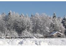 Winterwanderung in Grünau