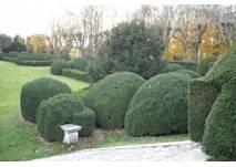 Der Schlossgarten von Schloss Halbturn