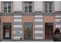 Linz Museum Genesis