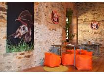 Burgerlebnis: Fledermaus in Lockenhaus