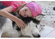Sommer Schlittenhundefahrt in Aigen Mountain Wolf Farm