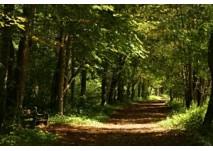 Murecker Auerlebnisweg