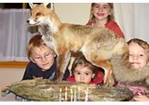 nationalparkhaus Kindergeburtstag