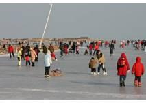 Eislaufen am Neusiedler See