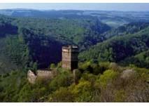 Ruine Schauenstein bei Pölla