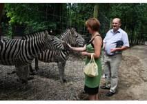 Tierpark der Stadtgemeinde Haag