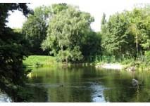 Türkenschanzpark