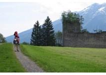 Wald im Pinzgau Ruine Hieburg