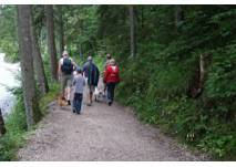 Wanderung Damüls Bregenzerwald