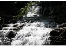 Wasserwunder Tiefenbach