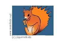 Squirrelkids Salzburg