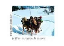 Pferdekutschenfahrt in der Ferienregion Traunsee