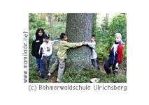 Waldtheater in der Böhmerwaldschule