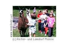 Kinderstunde am Lamahof Phönix