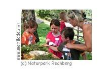 Kindergeburtstag im Naturpark Rechberg