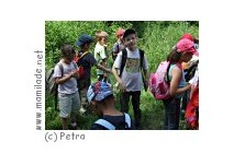 Kindergeburtstag im Nationalpark Purkersdorf