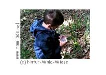 Natur-Wald-Wiese Kindergeburtstag