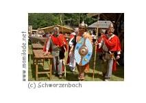Keltendorf Schwarzenbach