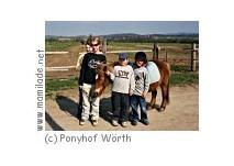 Ponyverleih am Pferde- und Ponyhof Wörth