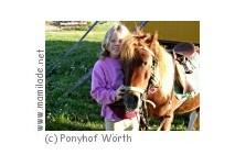 Kindergeburtstag am Ponyhof Wörth