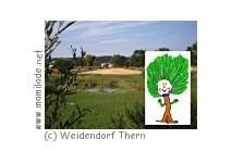 Weidendorf Thern