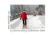 Rodeln am  Muttersberg
