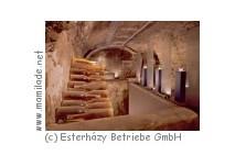 Weinmuseum Burgenland in Eisenstadt
