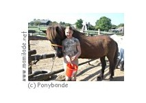 Die Ponybande in Mühlleiten