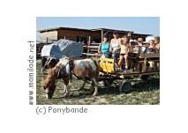 Kindergeburtstag bei der Ponybande in Mühlleiten