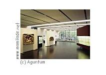 Aguntum bei Dölsach:  Stadt, Archäologischer Park, Museum