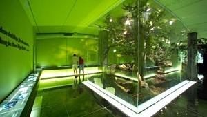 Waldwerkstatt Besucherzentrum