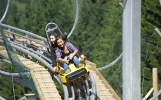 Rodelbahn Timoks Alm-Coaster in Fieberbrunn