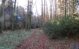 Naturwanderweg Eggelsberg