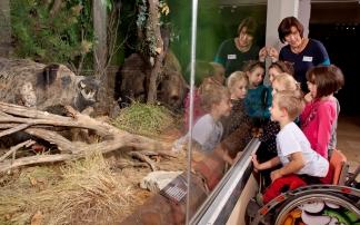 Kindergeburtstag im Landesmuseum Burgenland in Eisenstadt