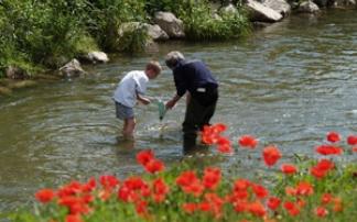 fließendes Wasser Erlebnis Biotop Liesingbach Wien