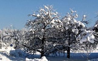 Winterwanderung in Gallspach