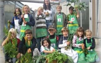 """Schule: """"Gemüsezwerge"""" und  """"Tier und wir""""  in Bruckneudorf"""