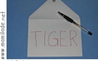 Schneck: Post für den Tiger
