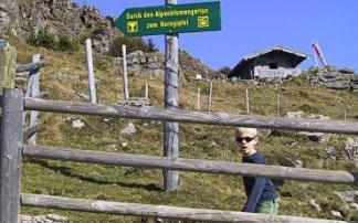 Alpenblumengarten am Kitzbüheler Horn