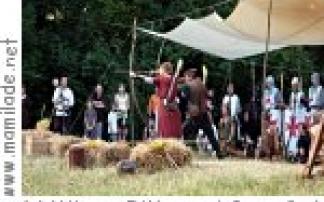 Wiener Ritter- und Sagenfest