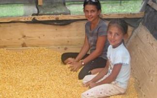 Kinderfest im Bauernnest