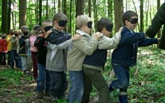 Waldschule Linz