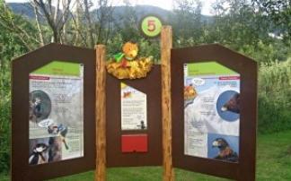 Robinson Spiel- und Abenteuerweg in Mittersill