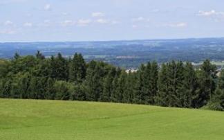 Naturpark Buchberg