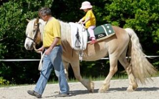 Pferdestall Wiesn